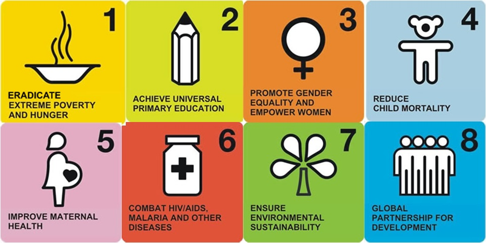 millennium development goal of primary education essay This pledge became the eight millennium development goals  goal 2: achieve universal primary education  the fourth millennium development goal aims to.